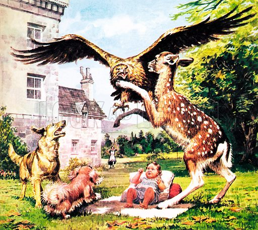 Animal Heroes: Corrie, the Prize-Fighter. Corrie was the subject of a book, The Singing Forest, by H Mortimer Batten in which he describes how the roe deer helped project a baby from a swooping eagle.