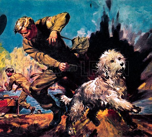 Animal Heroes: Ricky, Dog-o'-War. Ricky was recruited into the Royal Army Veterinary Corps and helped rescue Sgt. Maurice Yielding when he was injured by an exploding mine. Despite being wounded himself, Ricky sniffed a path through the minefield, allowing others to follow his path and resue the injured sergeant.