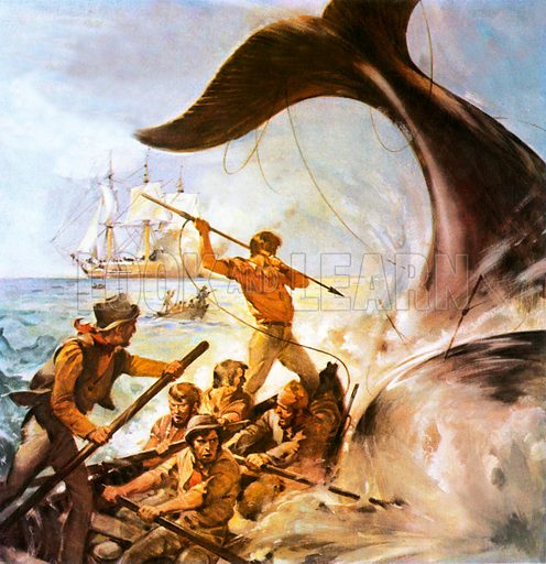 Harpooning a whale, scene from Peter the Whaler, by WHG Kingston