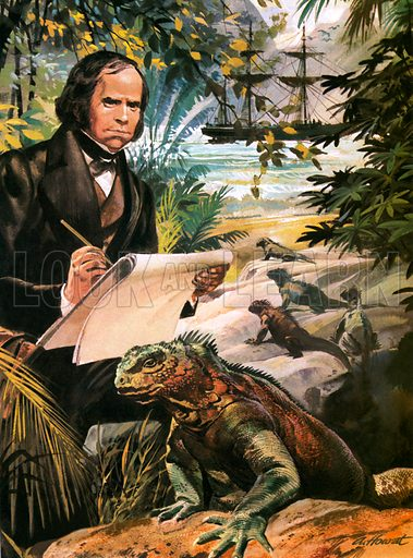 Charles Darwin on the Galapagos Islands,  picture, image, illustration