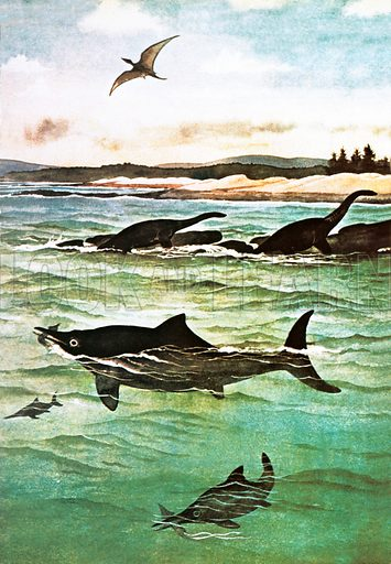 Pre-historic sea creatures. At Holtzmaden in Germany the remains of many sea creatures of the early Jurassic period have been found.