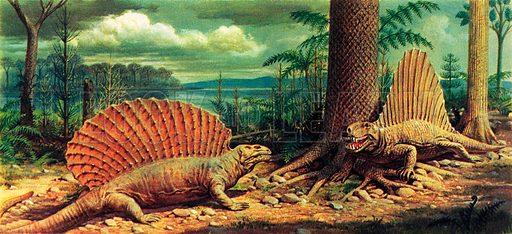 The dimetrodon, picture, image, illustration