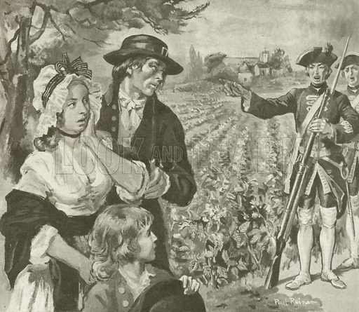 The Potato in France. The curiosity and appetite of the French peasants was aroused at the sight of potatoes growing under close guard.