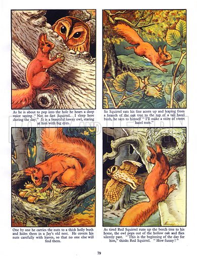 Little Red Squirrel. Comic strip from Jack and Jill Book 1956.