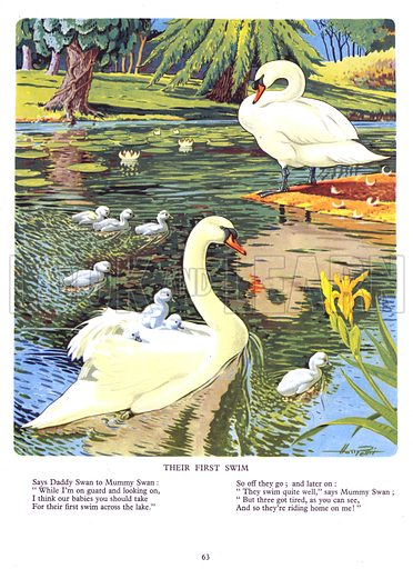 Their First Swim. Illustration from Jack and Jill Annual Book 1959.