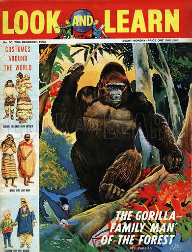 The Gorilla. Family 'Man' of the Forest. Plus Costumes Around the World from Iceland, New Zealand and Kashmir.