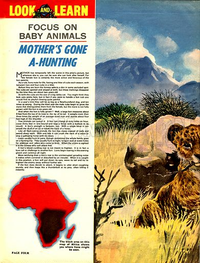 Focus on Baby Animals: Mother's Gone a-Hunting.