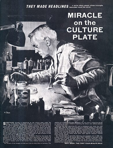 They Made Headlines: Miracle of the Culture Plate -- Alexander Fleming and the discovery of penicillin.