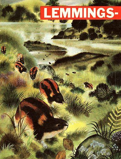 Lemmings -- They Must Migrate or Die!.