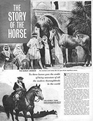 The Story of the Horse.