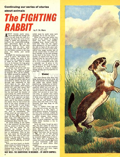 The Fighting Rabbit. Based on a story by F. St. Mars.