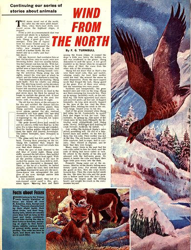 Wind from the North. A story by F. G. Turnbull.