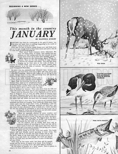This Month in the Country: January.