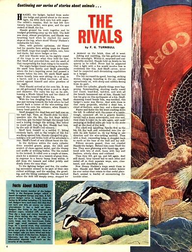 The Rivals. A story by F. G. Turnbull.