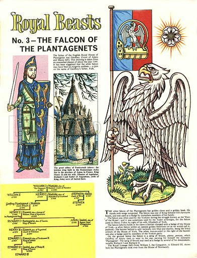 Royal Beasts: The Falcon of the Plantagenets.