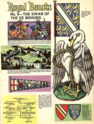 Royal Beasts: The Swan of the De Bohuns.