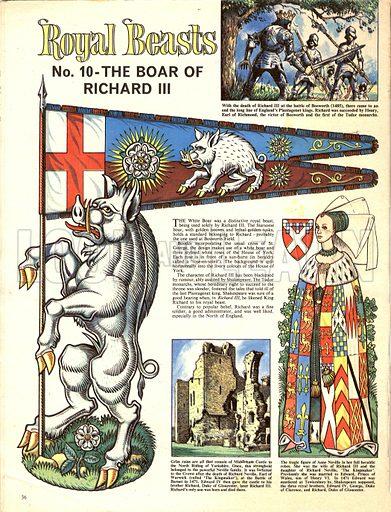 Royal Beasts: The Boar of Richard III.