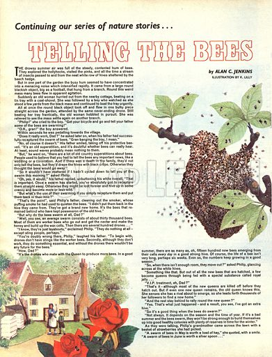 Telling the Bees. A story by Alan C. Jenkins.