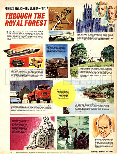 Famous Rivers -- The Severn: Through the Royal Forest.
