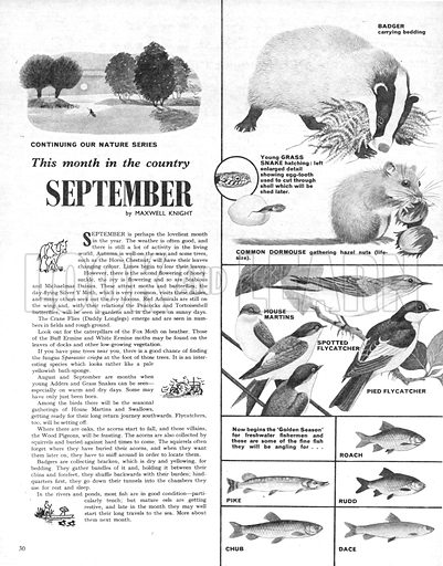 This Month in the Country: September.