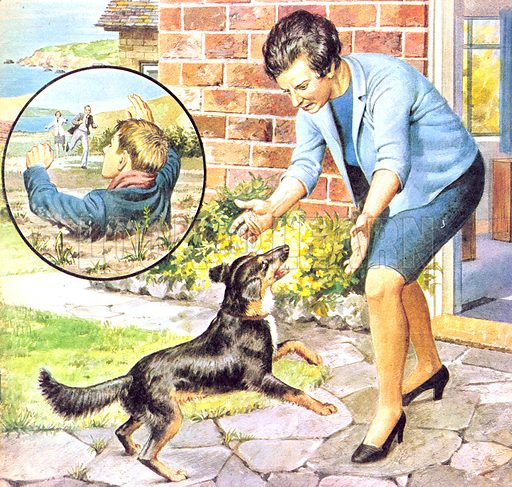 Wonderful Dog Wendy (illustration, picture: Robert Brook)