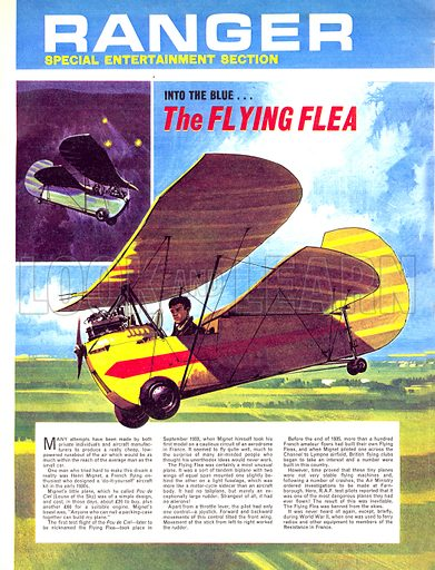 Into the Blue: The Flying Flea.