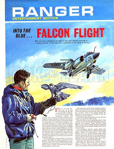 Into the Blue: Falcon Flight.