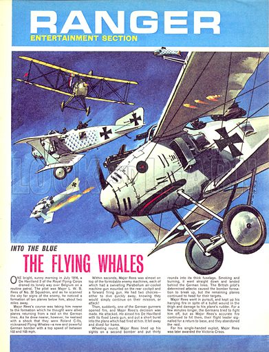 Into the Blue: The Flying Whales.