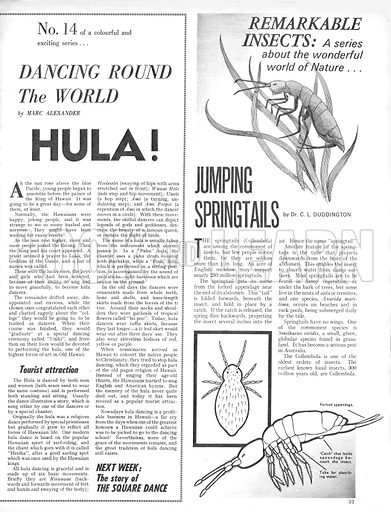 Dancing Around the World: Hula! Plus, Remarkable Insects: Jumping Springtails.