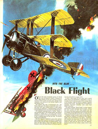 Into the Blue: Black Flight.