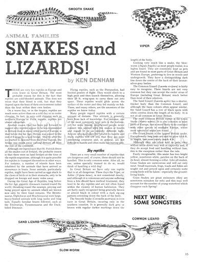 Animal Families: Snakes and Lizards!.