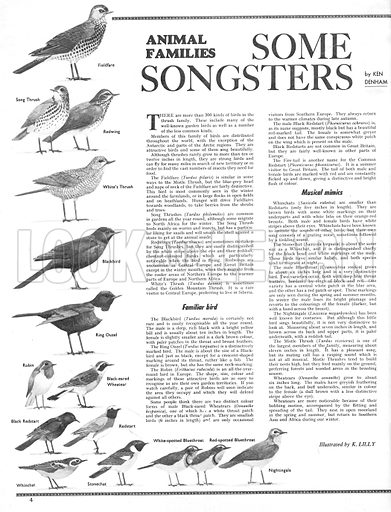 Animal Families: Some Songsters.