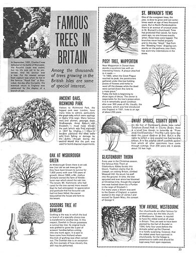 Famous Trees in Britain.