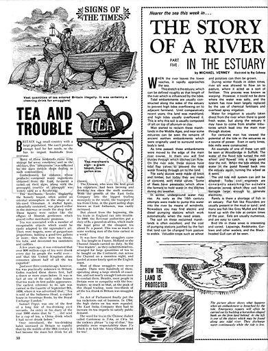 The Story of a River: In the Estuary; plus, Signs of the Times: Tea and Trouble.