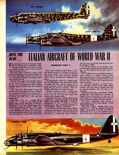 Into the Blue: Italian Aircraft of World War II.