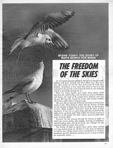 Freedom of the Skies.