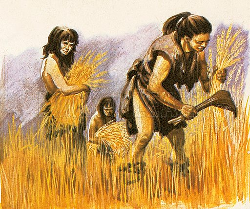 """Stone Age people lived in the age before written history. The last section of the Stone Age is called """"Neolithic.""""  Neolithic people not only knew how to hunt and gather wild food. They kept herds of cattle amd also cultivated crops. This meant that they stayed in one place for much longer than their ancestors."""