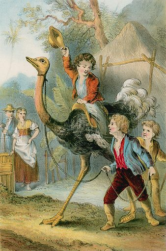Training the ostrich. Illustration for The Swiss Family Robinson (Nelson, 1874).