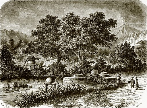 Japanese tea gardens. All Round the World, First Series (1868).
