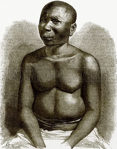 A native of Andaman islands. All Round the World, First Series (1868).
