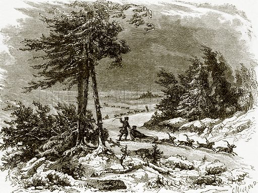 Sledge and dogs on the Amoor. All Round the World, First Series (1868).