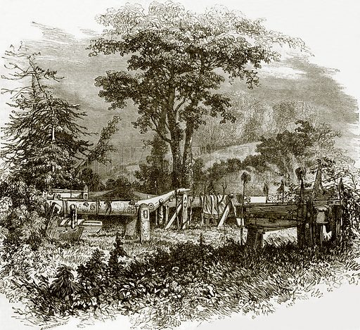 Indian sepulchres on the banks of the Cowlitz river. All Round the World, First Series (1868).
