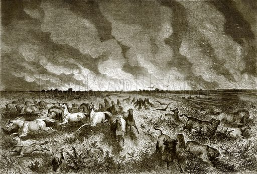 The prairie on fire. All Round the World, First Series (1868).