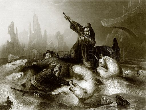 Whalers attacked by bears. Payne's Universum (1847).