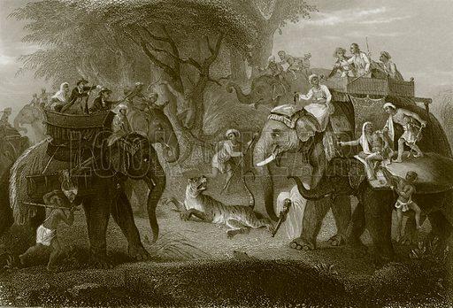 The tiger hunt. Payne