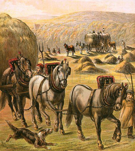 Bringing in the hay.  Aunt Louisa