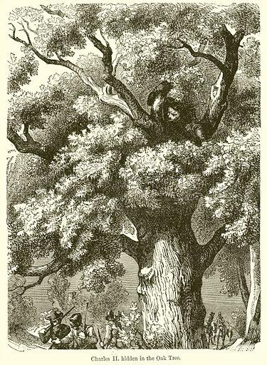 Charles II. Hidden in the Oak Tree.