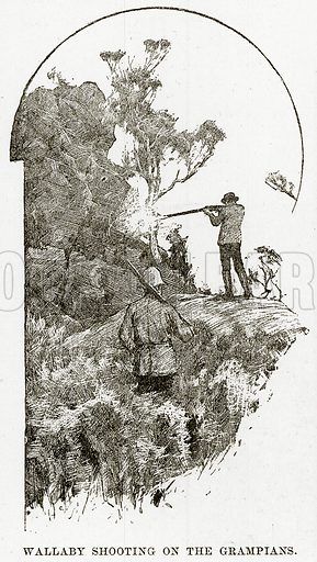 Wallaby shooting on the Grampians. Illustration from Cassell's Picturesque Australasia by EE Morris (c 1889).