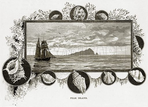 Peak Island. Illustration from Cassell's Picturesque Australasia by EE Morris (c 1889).