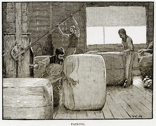Packing. Illustration from Cassell's Picturesque Australasia by EE Morris (c 1889).